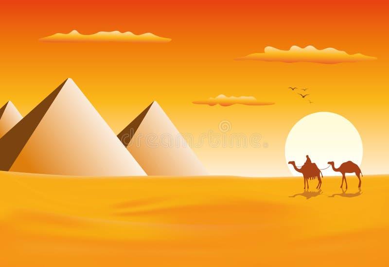 Τροχόσπιτο καμηλών στις πυραμίδες Giza απεικόνιση αποθεμάτων
