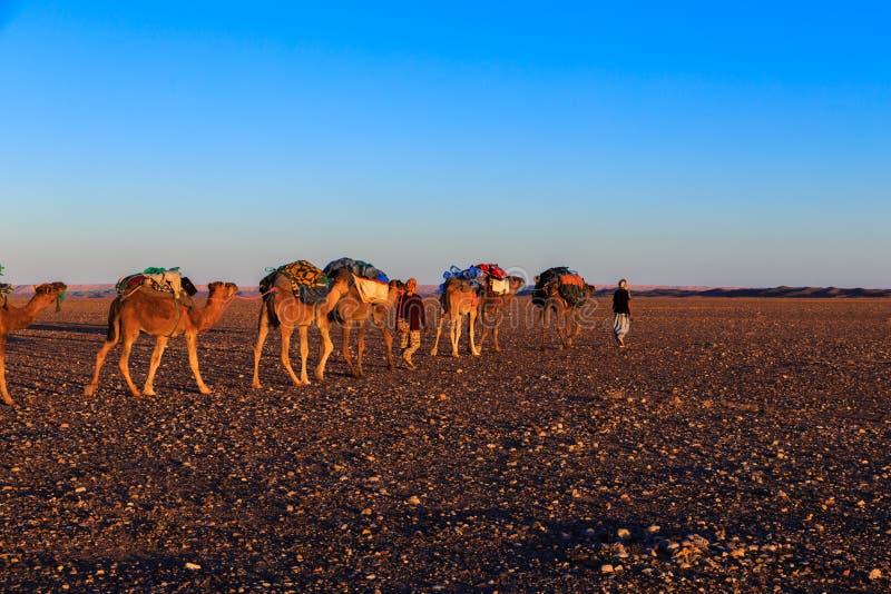 Τροχόσπιτο στην έρημο στοκ εικόνες