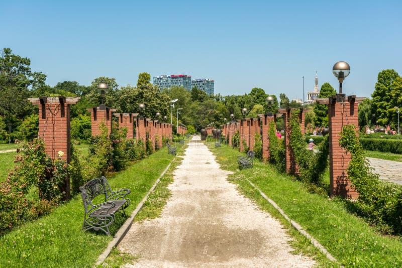 Τρόπος αλεών στο δημόσιο πάρκο Herastrau στοκ εικόνες με δικαίωμα ελεύθερης χρήσης