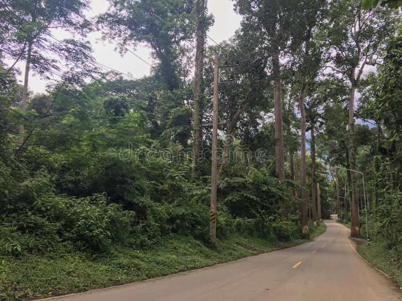 Τρόπος εθνικών οδών και ταξιδιών να πάει στη φύση στο βουνό στοκ εικόνα με δικαίωμα ελεύθερης χρήσης