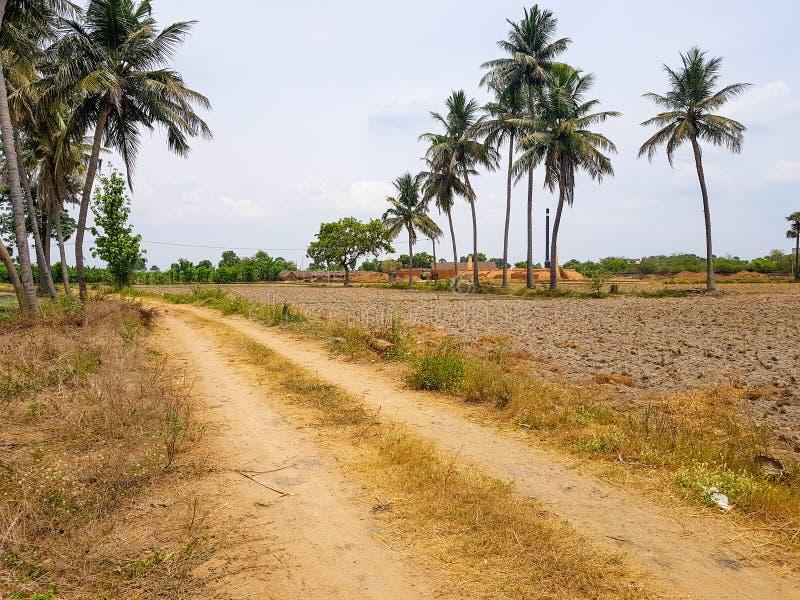 Τρόπος λάσπης στο χωριό στοκ εικόνα