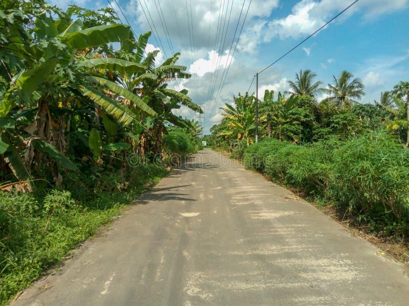 Τρόπος να επιστρέψει το χωριό στοκ εικόνα με δικαίωμα ελεύθερης χρήσης