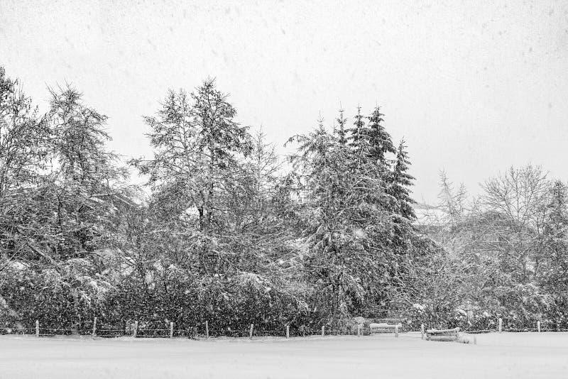 τρόπος πάρκων πόλεων βαριές χιονοπτώσεις στοκ φωτογραφία με δικαίωμα ελεύθερης χρήσης
