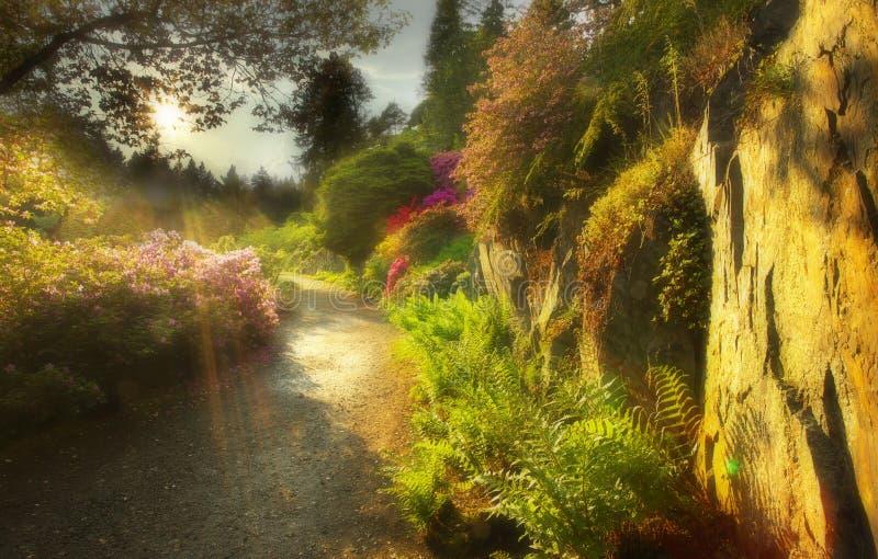Τρόπος στον καλά-τειμένο κήπο στοκ φωτογραφία