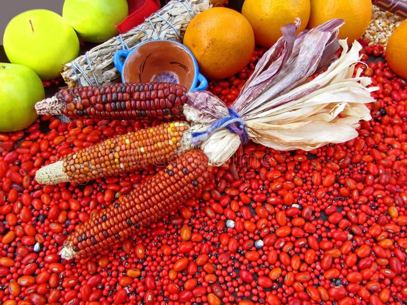 τρόφιμα Μεξικό παρουσίασης νέο στοκ εικόνες