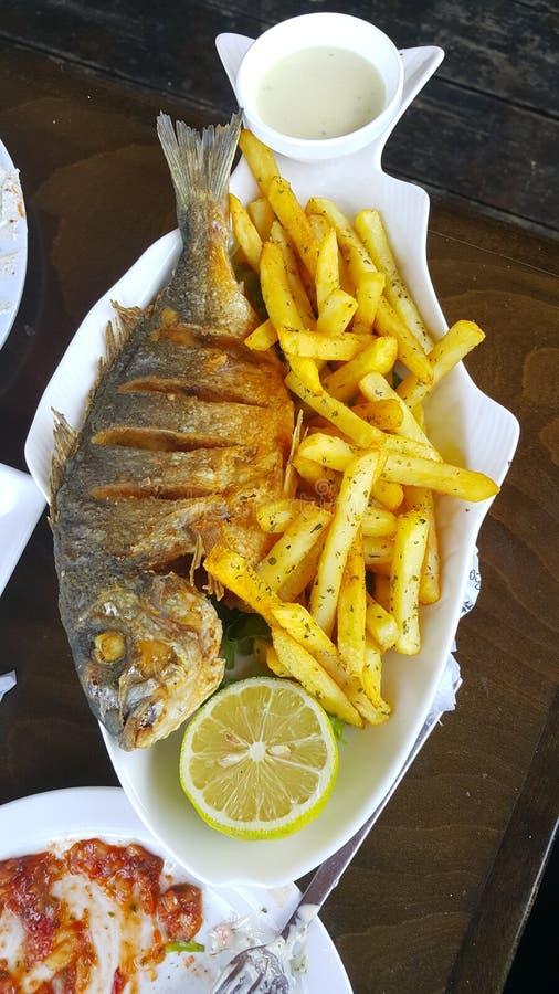 Τρόφιμα ψαριών στοκ φωτογραφία