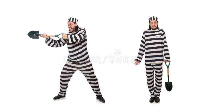 Τρόφιμος φυλακών με το φτυάρι που απομονώνεται στο λευκό στοκ φωτογραφίες με δικαίωμα ελεύθερης χρήσης