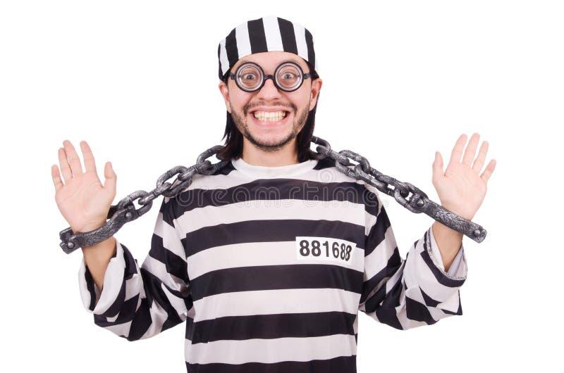 Τρόφιμος φυλακών που απομονώνεται στο άσπρο υπόβαθρο στοκ φωτογραφίες με δικαίωμα ελεύθερης χρήσης