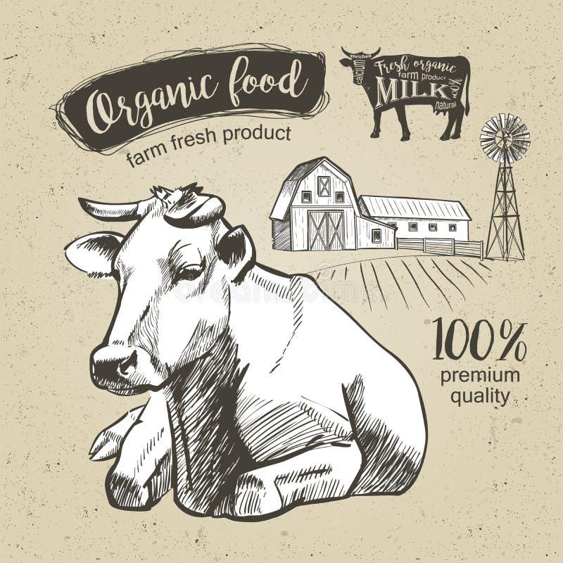 Τρύγος αγελάδων γραφικός απεικόνιση αποθεμάτων