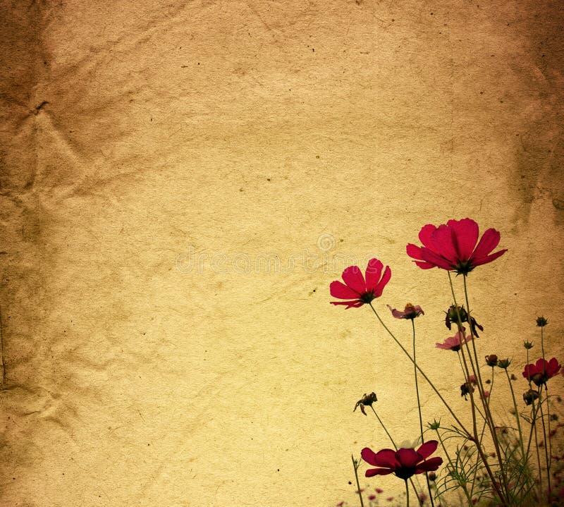 τρύγος εγγράφου λουλουδιών στοκ εικόνες με δικαίωμα ελεύθερης χρήσης