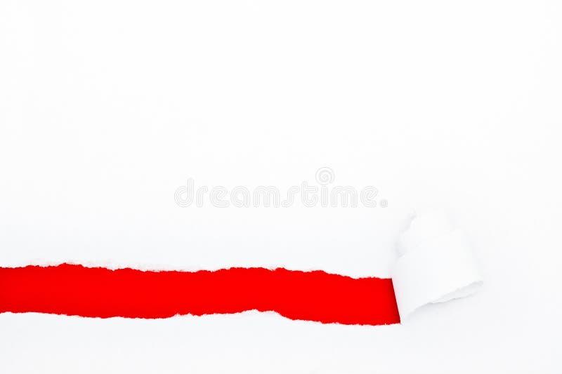 Τρύπα που σχίζεται στη Λευκή Βίβλο στοκ εικόνα