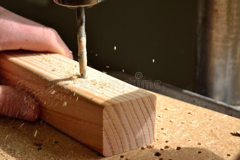 Τρύπα στην ξύλινη εποχή στοκ εικόνες