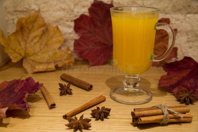 Τσάι από τα μούρα και τα καρυκεύματα θάλασσα-buckthorn Σκηνή φθινοπώρου με το ani στοκ φωτογραφίες με δικαίωμα ελεύθερης χρήσης