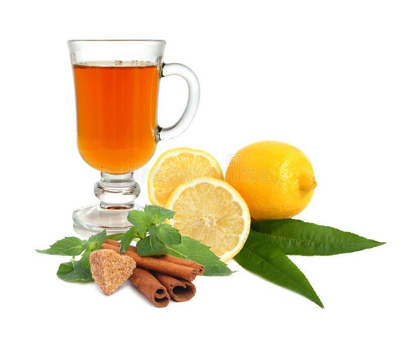 τσάι ζάχαρης μεντών λεμονιών κανέλας στοκ εικόνες με δικαίωμα ελεύθερης χρήσης