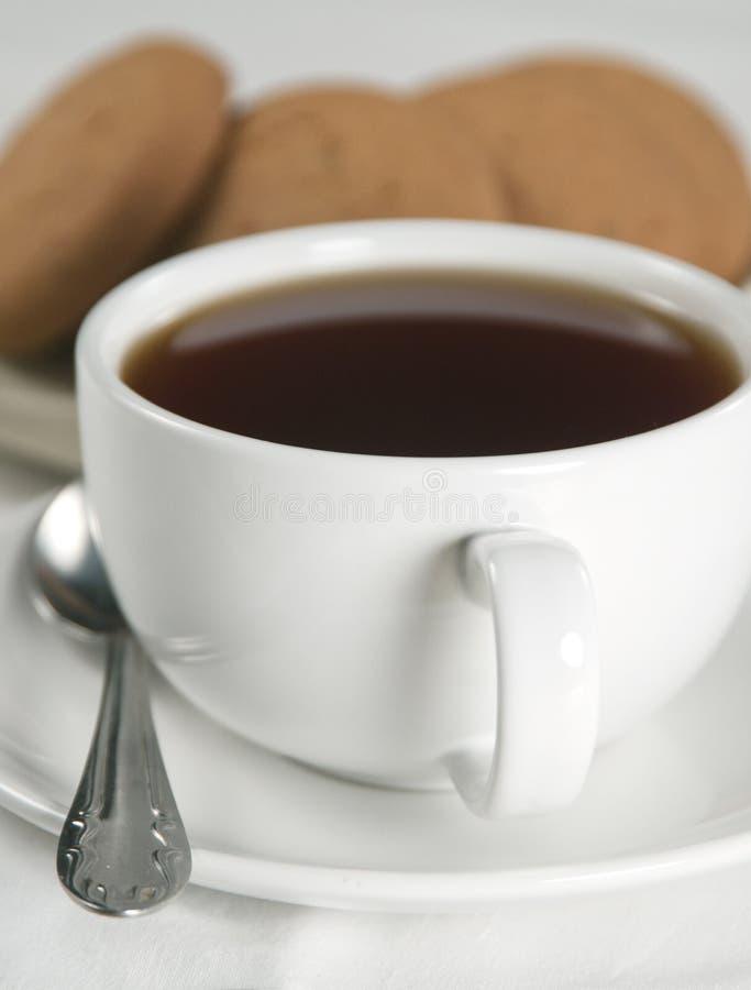 τσάι ζύμης στοκ εικόνες
