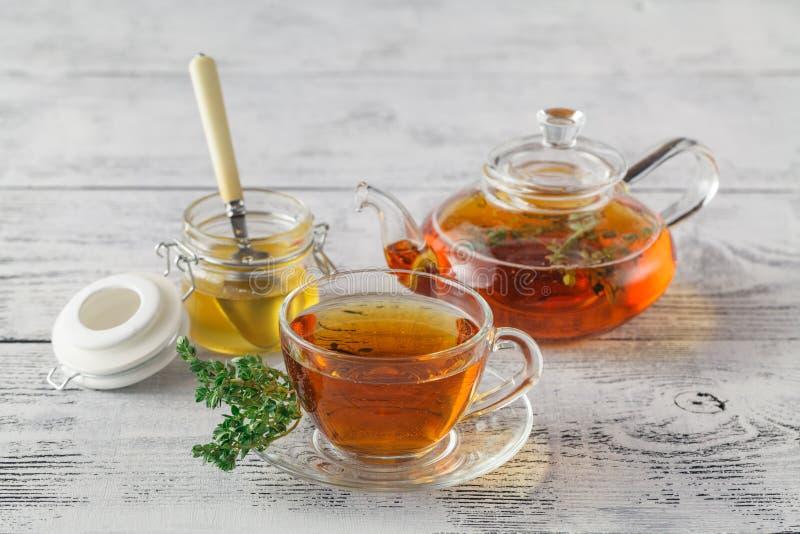 Τσάι θυμαριού με το φρέσκο θυμάρι δεσμών, θυμάρι μέσα στη φλυτζάνα τσαγιού, άσπρο β στοκ φωτογραφία με δικαίωμα ελεύθερης χρήσης