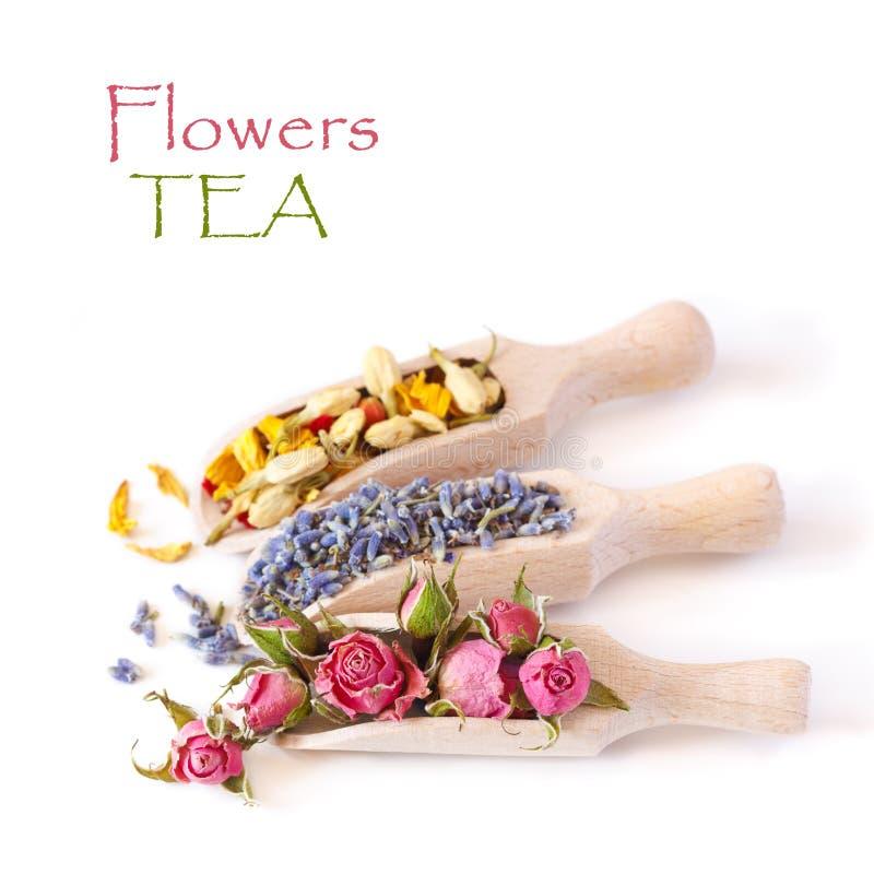 Τσάι λουλουδιών. στοκ φωτογραφία με δικαίωμα ελεύθερης χρήσης