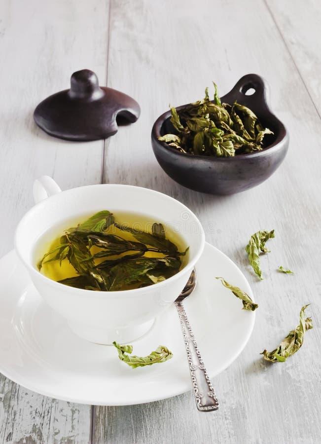 τσάι μεντών στοκ εικόνα με δικαίωμα ελεύθερης χρήσης