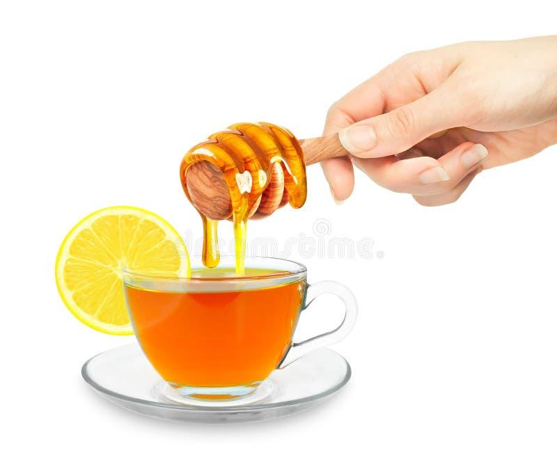 Τσάι με το μέλι στοκ φωτογραφία με δικαίωμα ελεύθερης χρήσης
