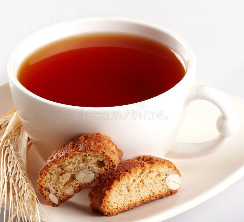 τσάι φλυτζανιών μπισκότων στοκ εικόνες