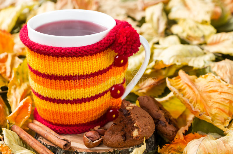 Τσάι φρούτων σε ένα φλυτζάνι σε μια πλεκτή κάλυψη στοκ φωτογραφία