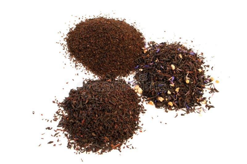 τσάι φύλλων στοκ εικόνα