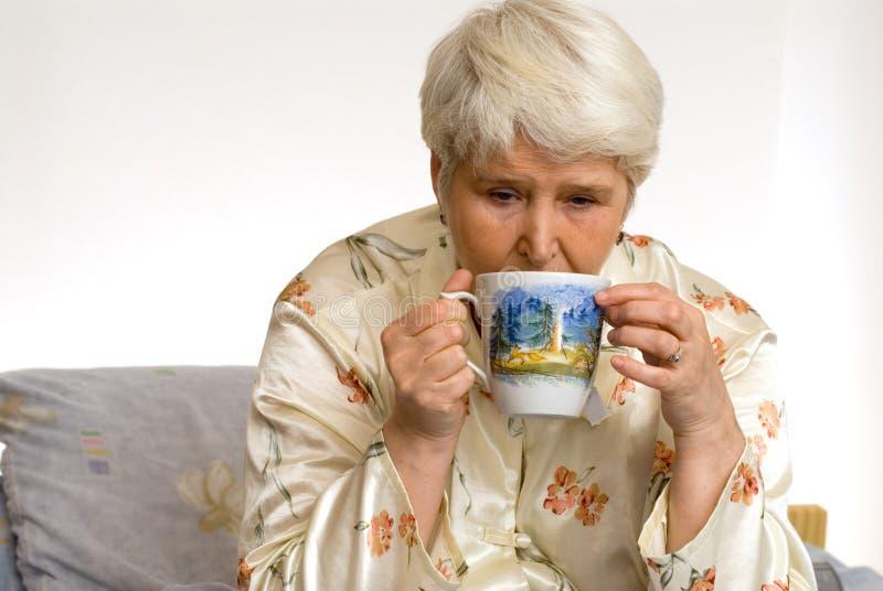 τσάι στοκ εικόνες