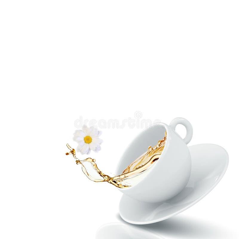 Τσάι Chamomile στοκ φωτογραφία