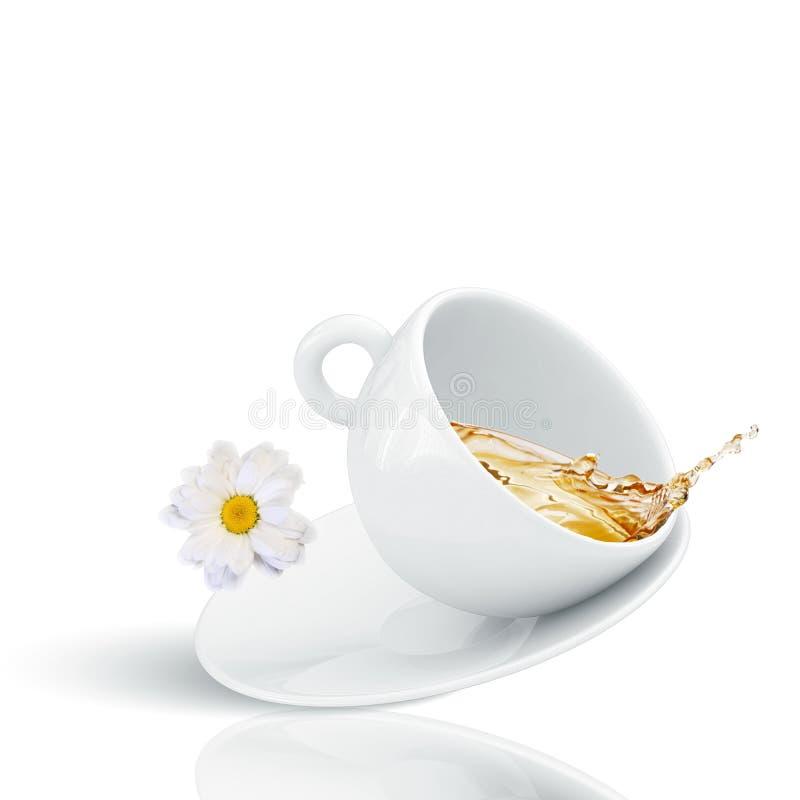 Τσάι Chamomile στοκ εικόνα