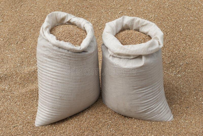 Τσάντα του σίτου. στοκ φωτογραφία με δικαίωμα ελεύθερης χρήσης
