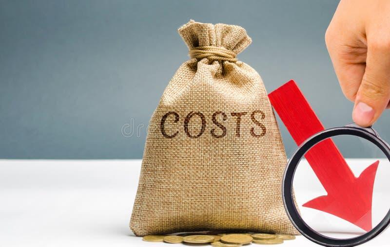 Τσάντα χρημάτων με τα νομίσματα με τις δαπάνες λέξης και ένα κάτω βέλος Μείωση Περικοπή δαπανών Η έννοια της επιχείρησης και της  στοκ εικόνα με δικαίωμα ελεύθερης χρήσης