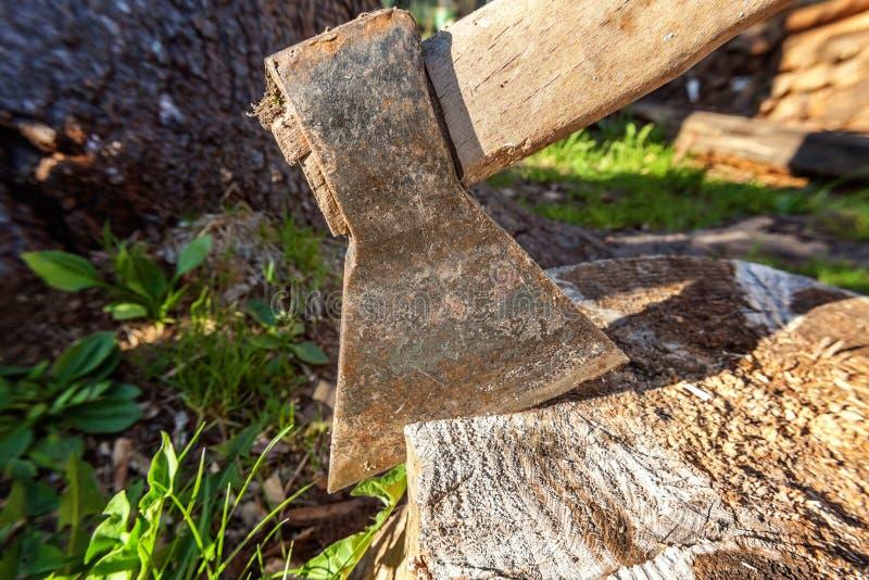 Τσεκούρι έτοιμο για την τέμνουσα ξυλεία στοκ φωτογραφία