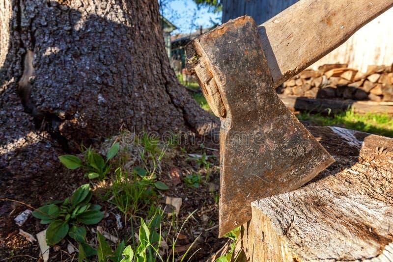 Τσεκούρι έτοιμο για την τέμνουσα ξυλεία στοκ εικόνες