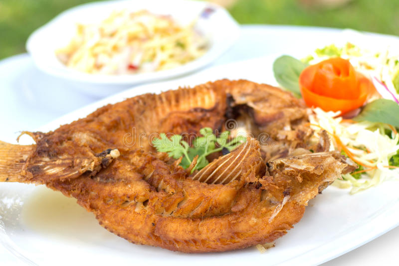 Τσιγαρισμένο κόκκινο tilapia με τη σάλτσα ψαριών στοκ εικόνα
