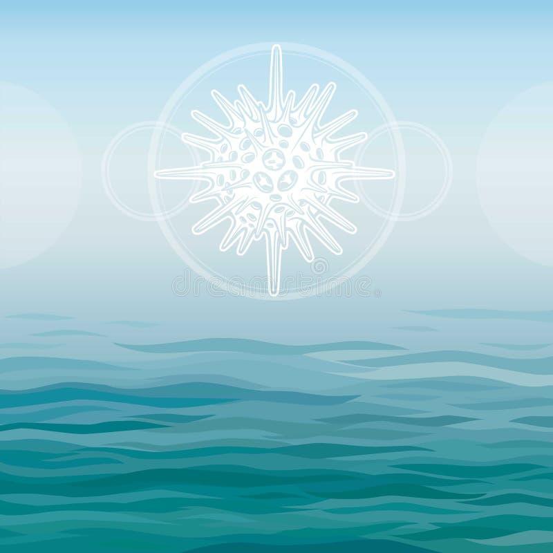 Τυποποιημένο σχέδιο radiolaria - ο στοιχειώδης θαλάσσιος οργανισμός διανυσματική απεικόνιση