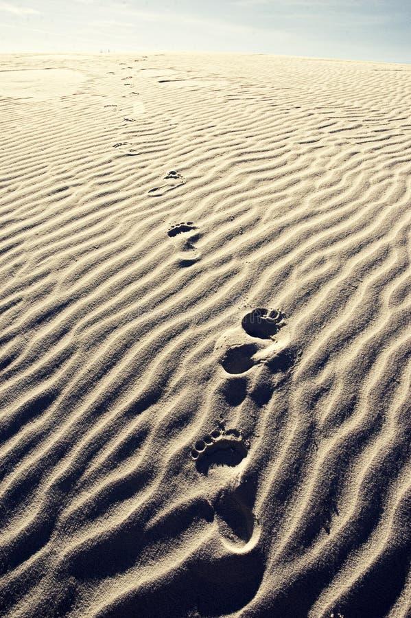 Τυπωμένες ύλες ποδιών στον αμμόλοφο άμμου στοκ εικόνες