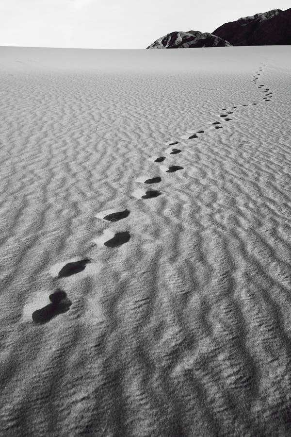 Τυπωμένες ύλες ποδιών του ανθρώπου σε έναν αμμόλοφο άμμου στοκ εικόνες