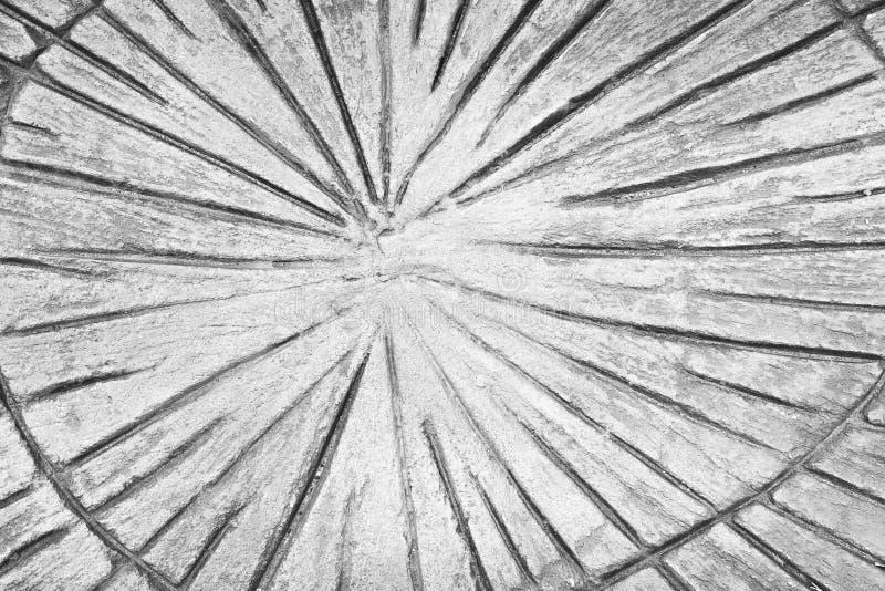 Τυπωμένη σύσταση σχεδίων γραμμών κολόβωμα στο γκρίζο ή άσπρο συγκεκριμένο υπόβαθρο πατωμάτων στοκ εικόνα με δικαίωμα ελεύθερης χρήσης