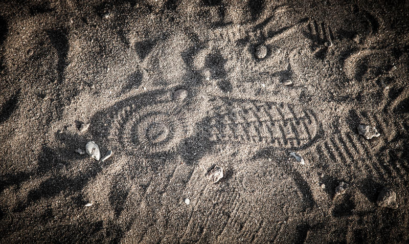 Τυπωμένη ύλη παπουτσιών στην άμμο με τα κοχύλια στοκ φωτογραφία με δικαίωμα ελεύθερης χρήσης