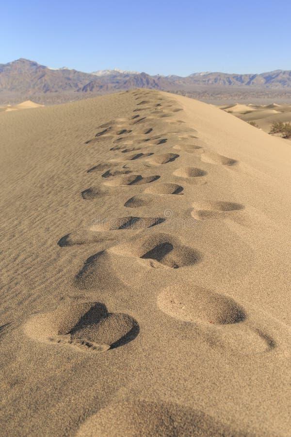 Τυπωμένη ύλη ποδιών αμμόλοφων άμμου στοκ φωτογραφίες με δικαίωμα ελεύθερης χρήσης