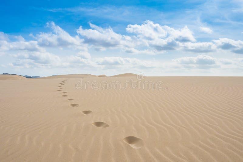 Τυπωμένη ύλη ποδιών στους αμμόλοφους άμμου Viana στην έρημο - Deserto de Viana μέσα στοκ εικόνα με δικαίωμα ελεύθερης χρήσης