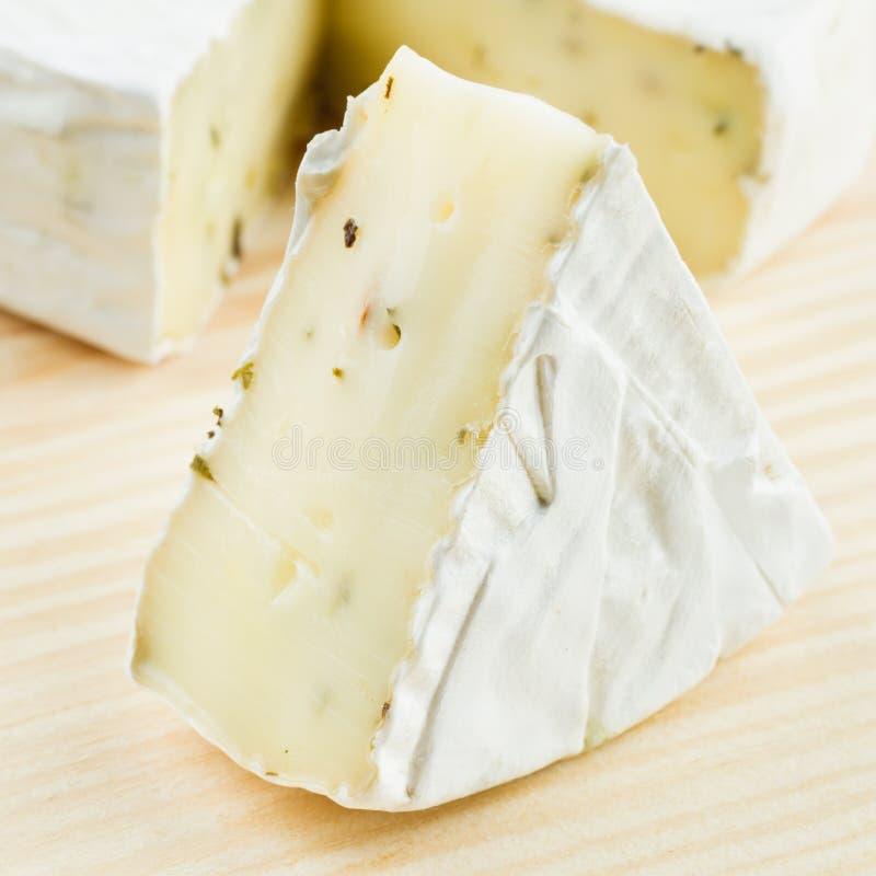 τυρί γαστρονομικό στοκ εικόνες
