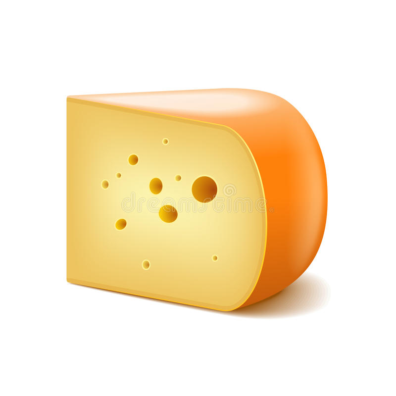 Τυρί γκούντα στο άσπρο διάνυσμα διανυσματική απεικόνιση