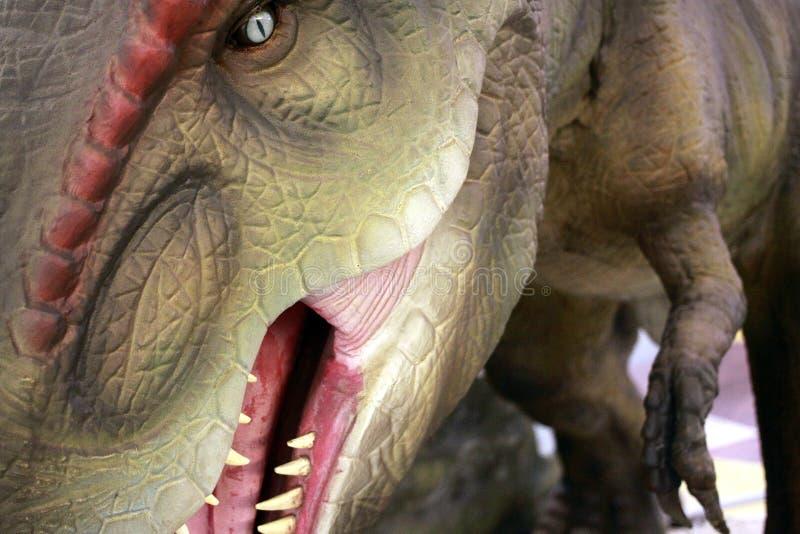Τυραννόσαυροι Rex στοκ φωτογραφίες με δικαίωμα ελεύθερης χρήσης