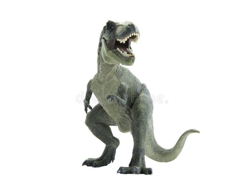 Τυραννόσαυρος δεινοσαύρων rex επίσης γνωστός ως τ rex στοκ εικόνα