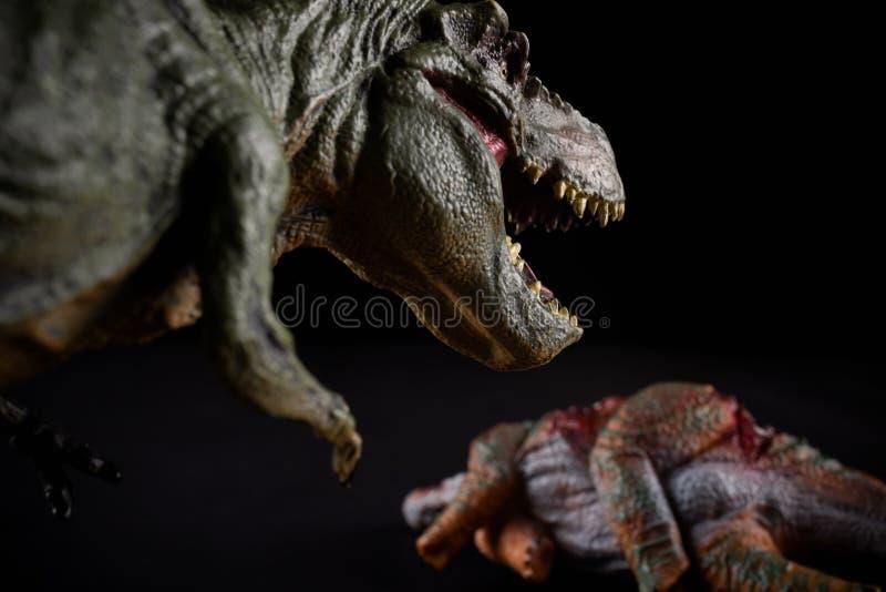 Τυραννόσαυρος μπροστά από ένα σώμα stegosaurus στο σκοτάδι στοκ φωτογραφίες