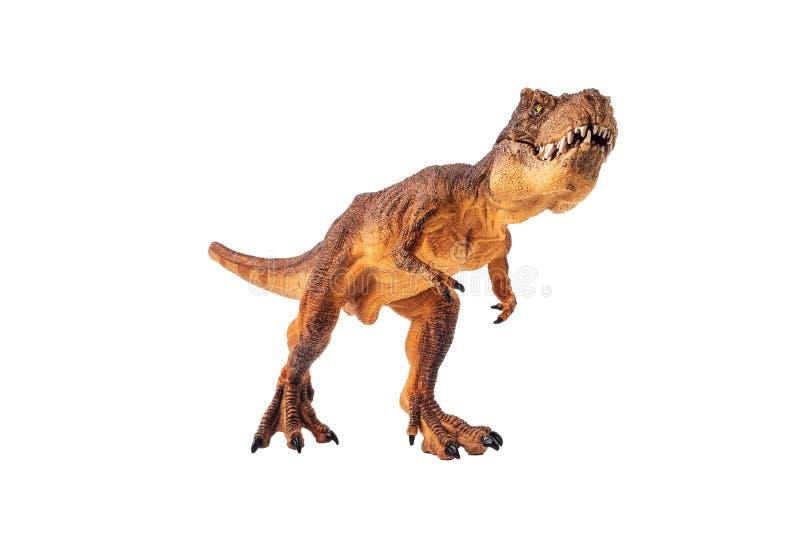 Τυραννόσαυρος rex, δεινόσαυρος στο άσπρο υπόβαθρο στοκ εικόνες