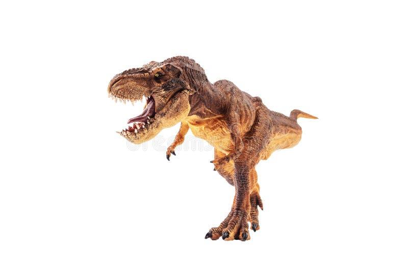 Τυραννόσαυρος rex, δεινόσαυρος στο άσπρο υπόβαθρο στοκ φωτογραφίες με δικαίωμα ελεύθερης χρήσης