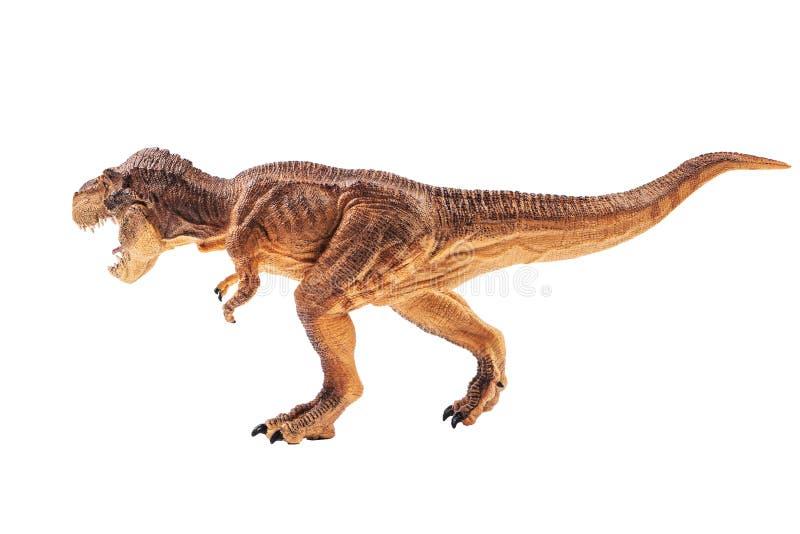 Τυραννόσαυρος rex, δεινόσαυρος στο άσπρο υπόβαθρο στοκ φωτογραφίες