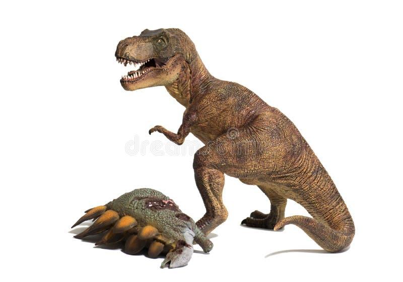 Τυραννόσαυρος rex με το νεκρό stegosaurus στο άσπρο υπόβαθρο στοκ φωτογραφίες με δικαίωμα ελεύθερης χρήσης